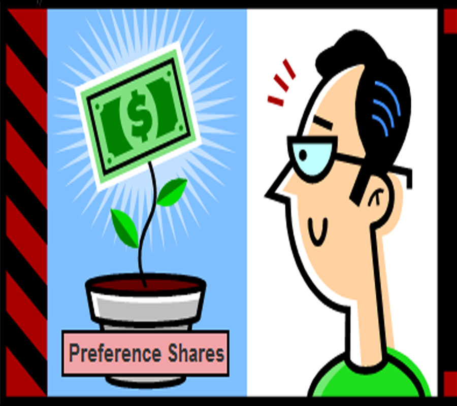 Preference Shares under the Companies Act 2013